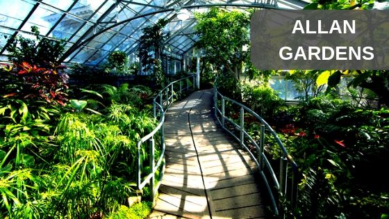 Allan Gardens photography location