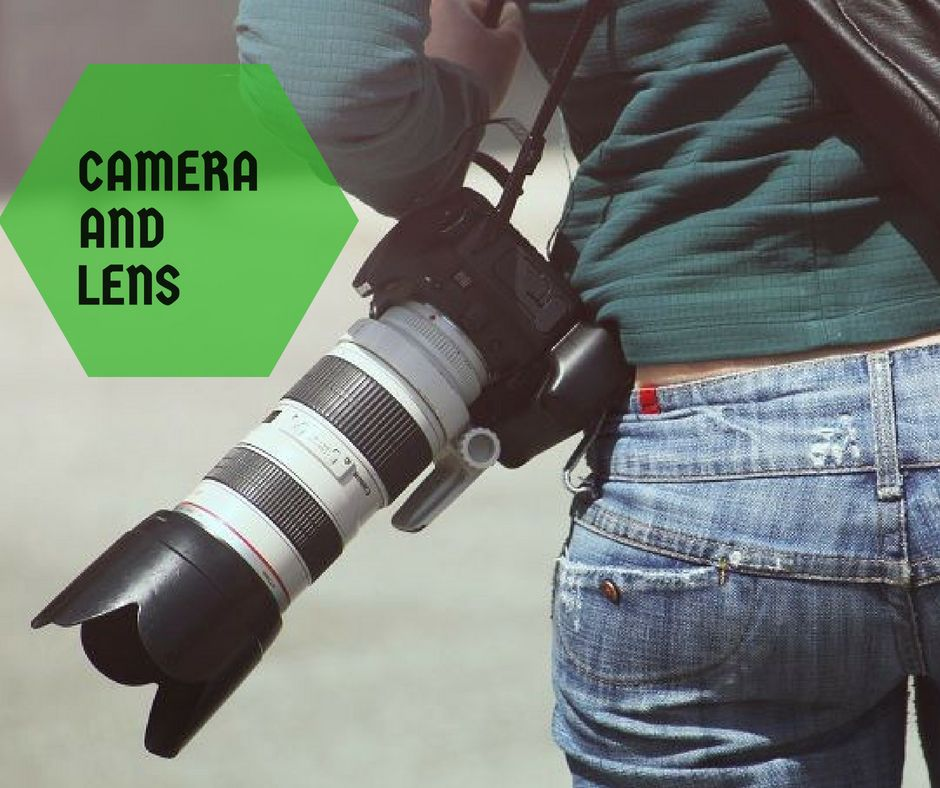 Camera and Lens Step 3-How to make the photo look professionals