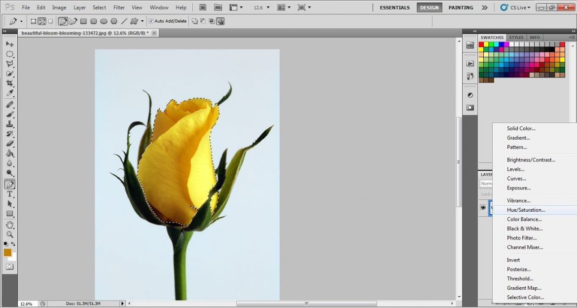 Hue and saturation layer in photoshop cs5