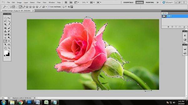 Technique of Editing Flower Photo