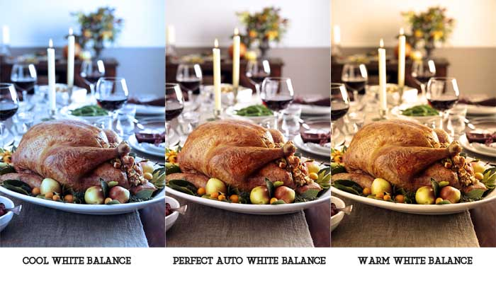 Top 10 thanksgiving photoshoot Tips