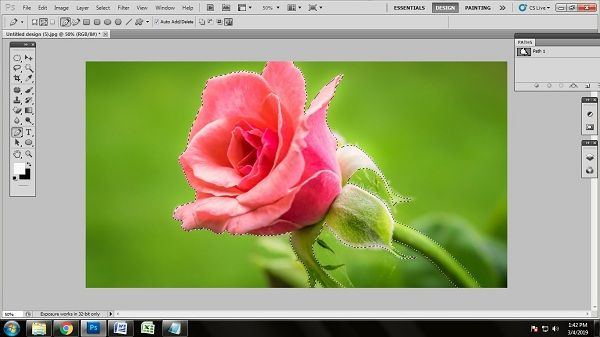 Flower Photo Editing Tips and Tricks in 2019