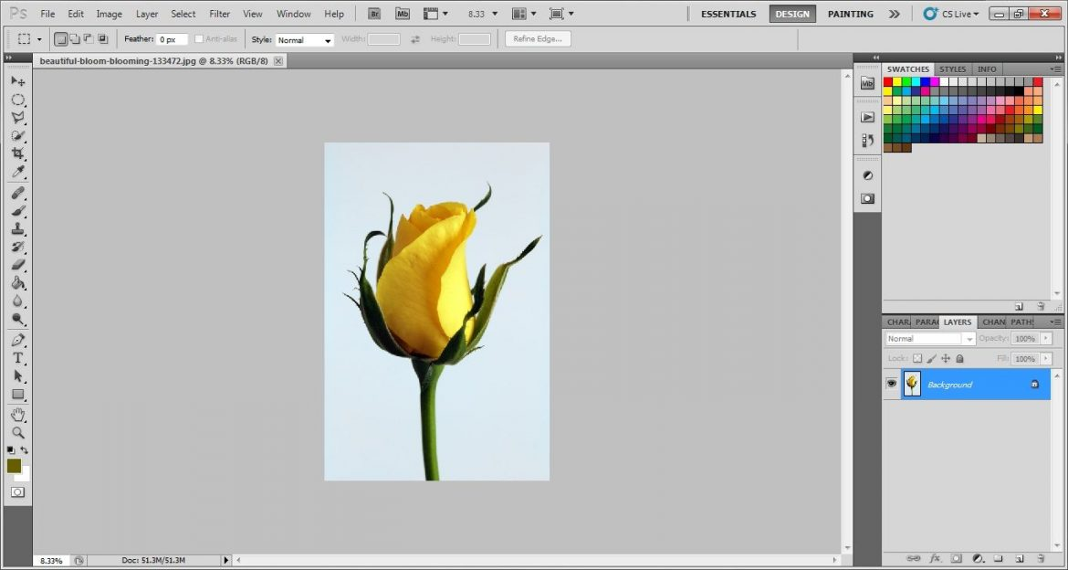 open image in Photoshop cs5