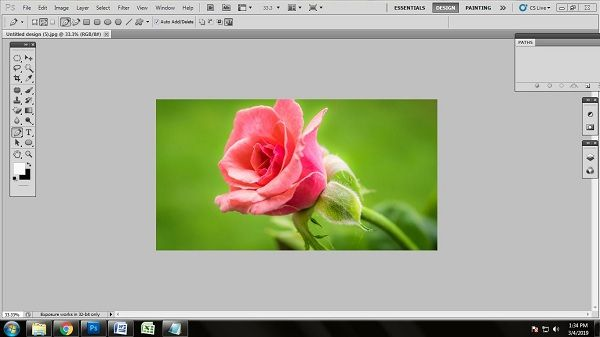 Flower Photo Editing Tips and Tricks