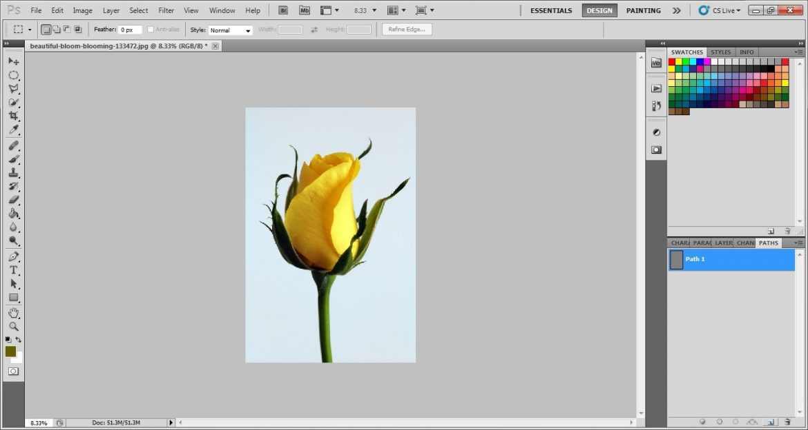 Take a path layer in photoshop