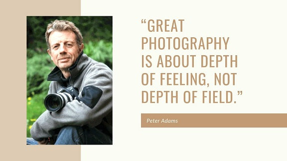photography quote by Peter Adams