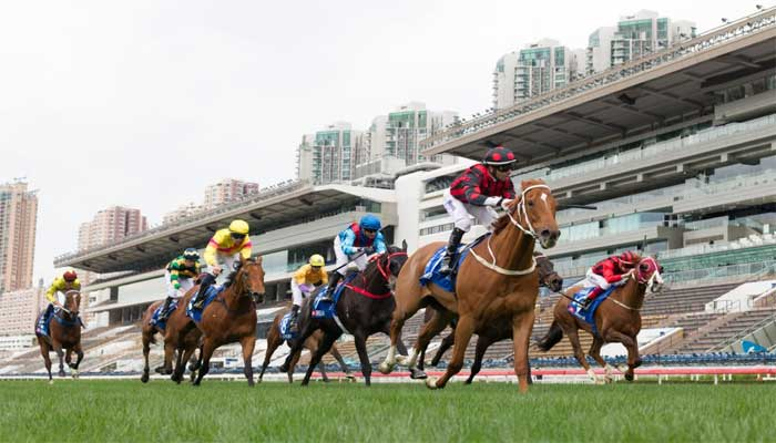 horse racing photography tips