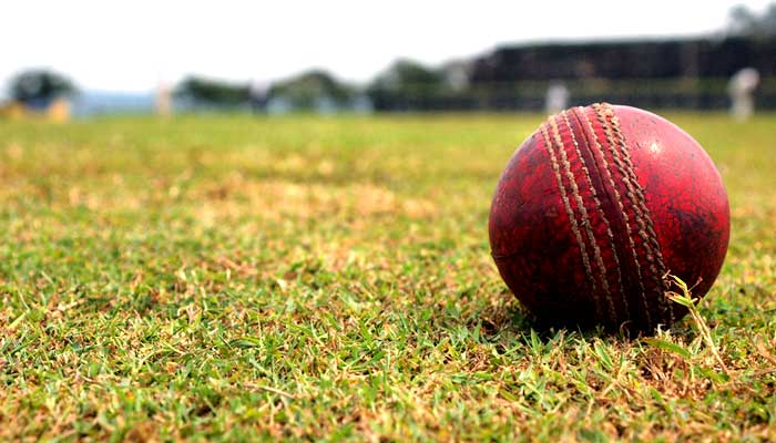 cricket ball photography
